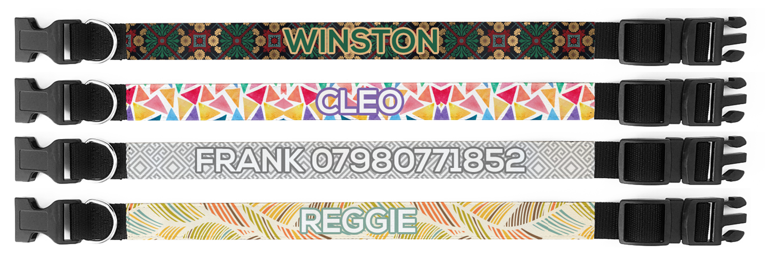 custom printed dog collar